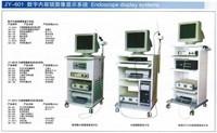 JY-601 digital endoscope image